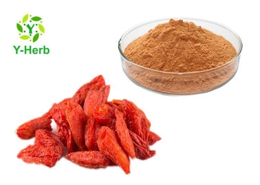 Pure Goji Juice Concentrate Powder Wolfberry Berry Lycium Barbarum Berry Extract